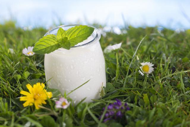 Probiotics for allergy relief?